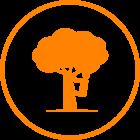 Tree Climbers Centre
