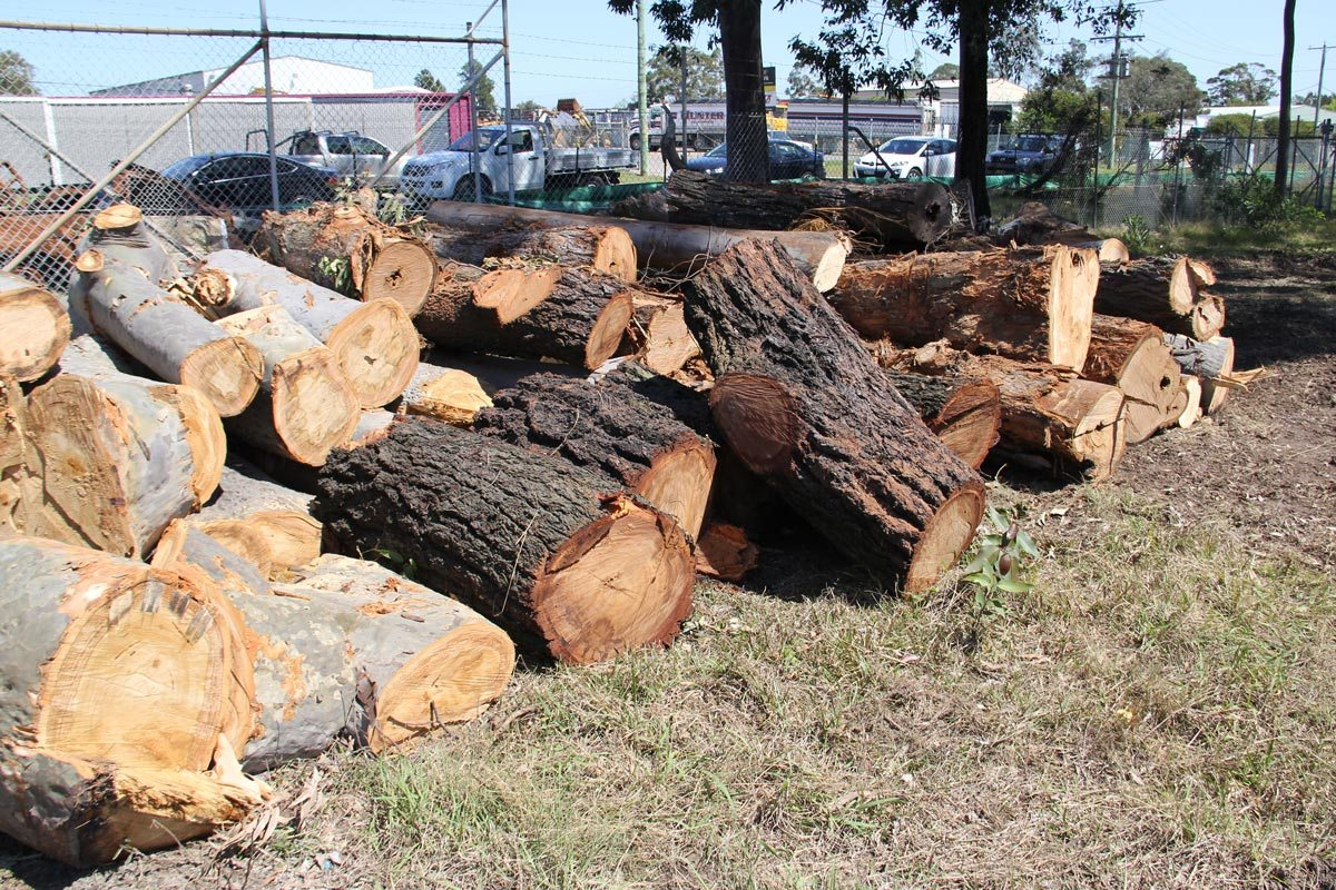 buy firewood at wholesale prices
