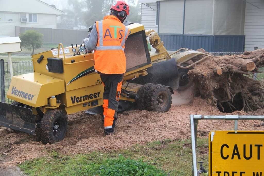 Residential stump grinding in Newcastle