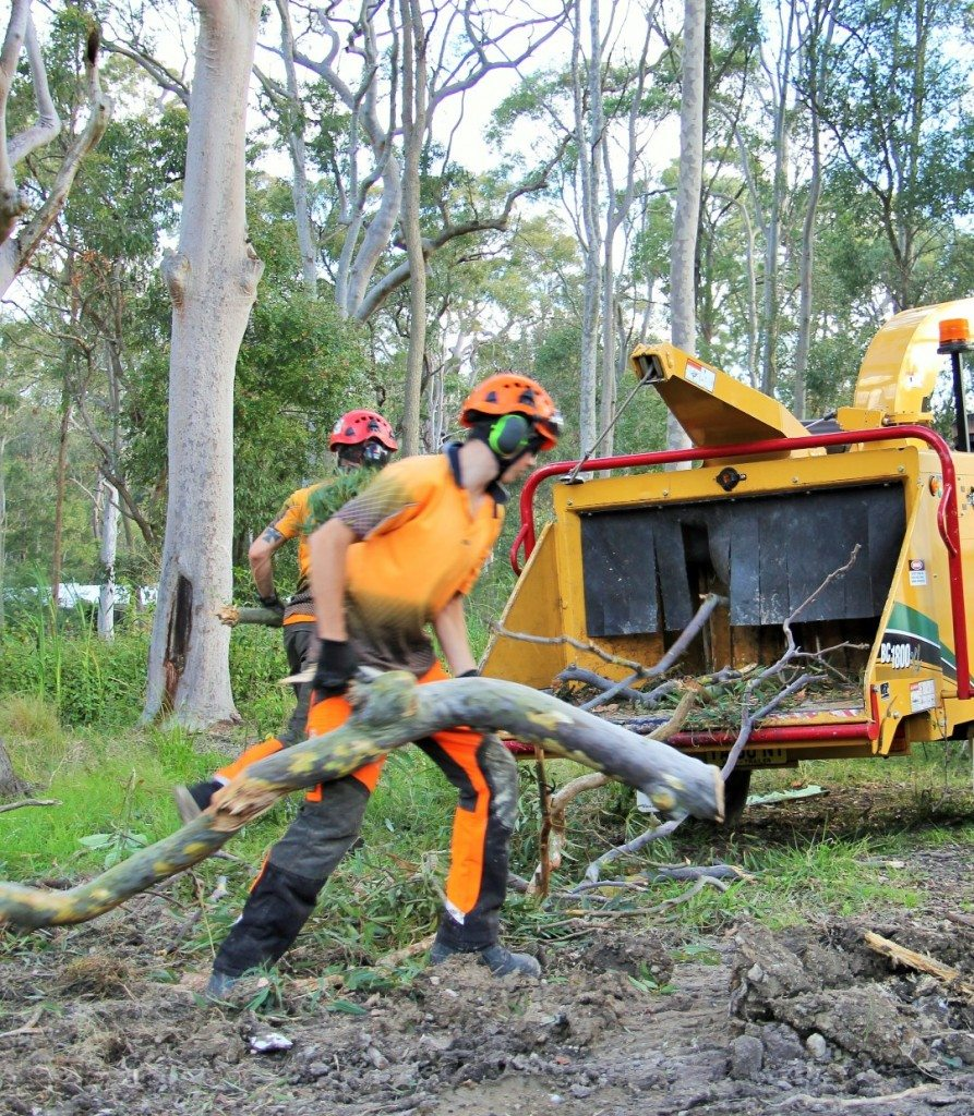 Land Clearing Cessnock