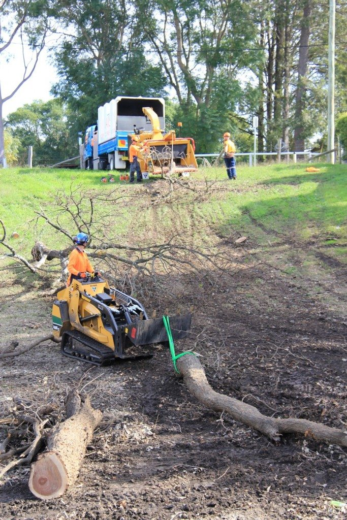 land clearing hunter valley